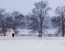 Owen's Poultry Farm in a Blizzard