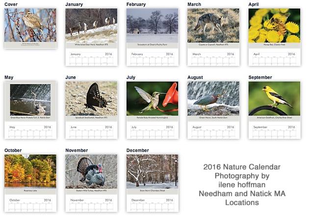 2016-calendar-small_2015-11-12_sRGB