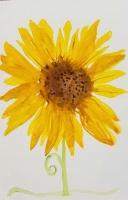 Watercolor Sunflower