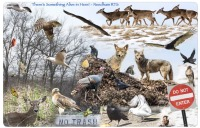 Placemat of Needham RTS Critters