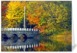 Needham Fishing Bridge Card