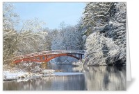 Red Bridge in Winter