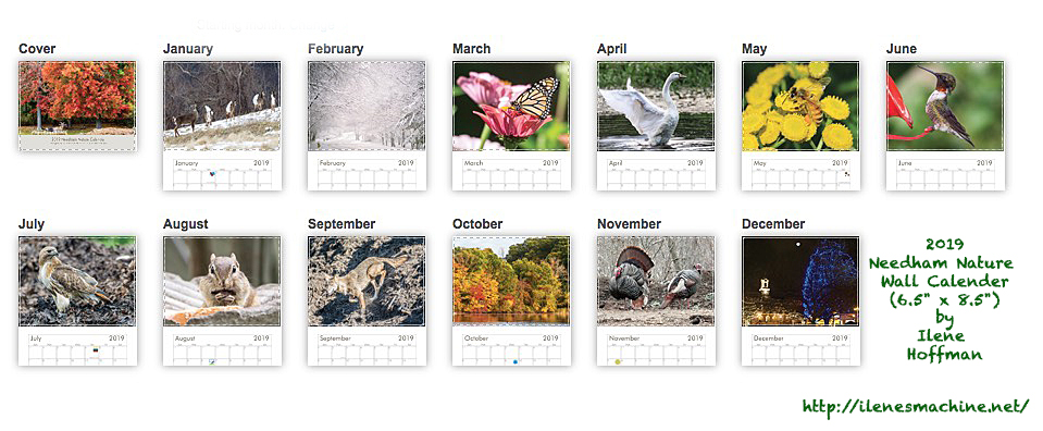 2019 Nature Calender sample-for web