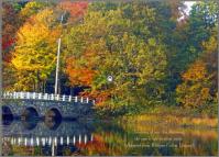 Fishing bridge quote
