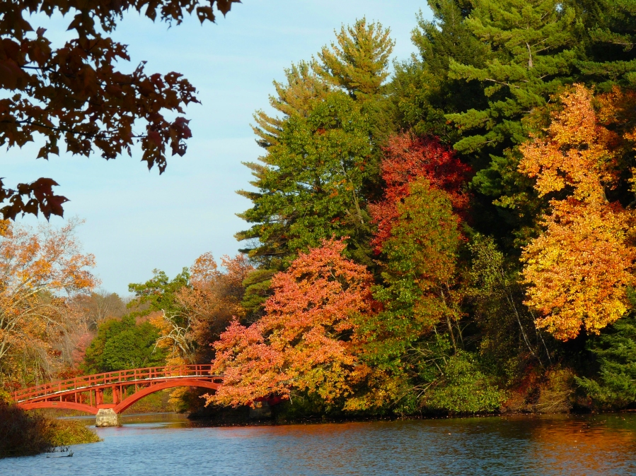 red bridge fall