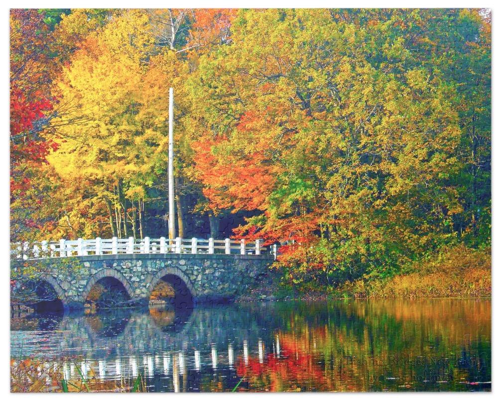 Fishing Bridge Puzzle